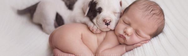 新生儿摄影:豆袋上的秘密
