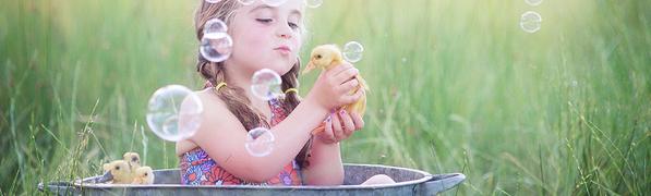 和小鸭子一起游泳