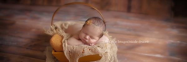摄影师尼科尔的新生儿摄影作品