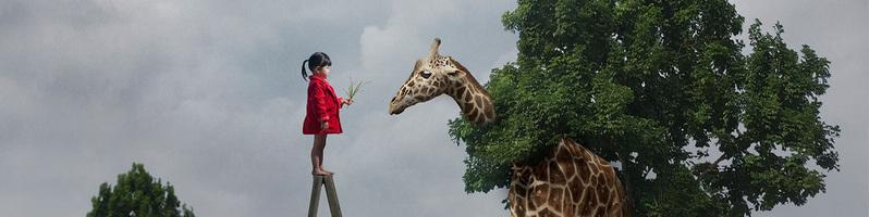 马来西亚儿童摄影师 Dave Koh 和他的环保概念摄影作品