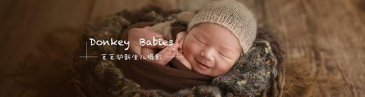 我们身边的新生儿摄影师:毛毛驴(贵州贵阳)