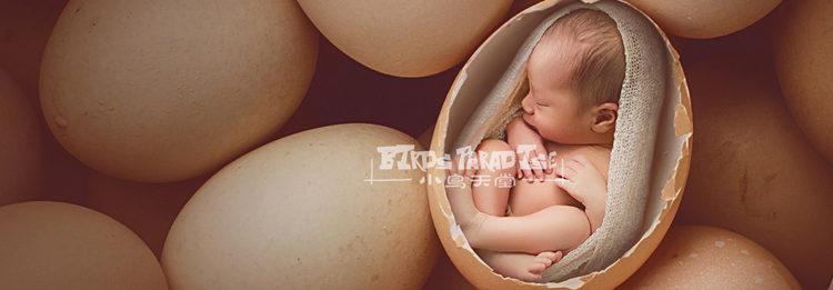新生儿摄影的创新:与小鸟天堂一席谈