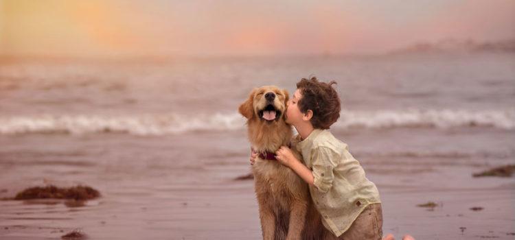 用照片讲故事,孩子与宠物娜娜的冒险时光!