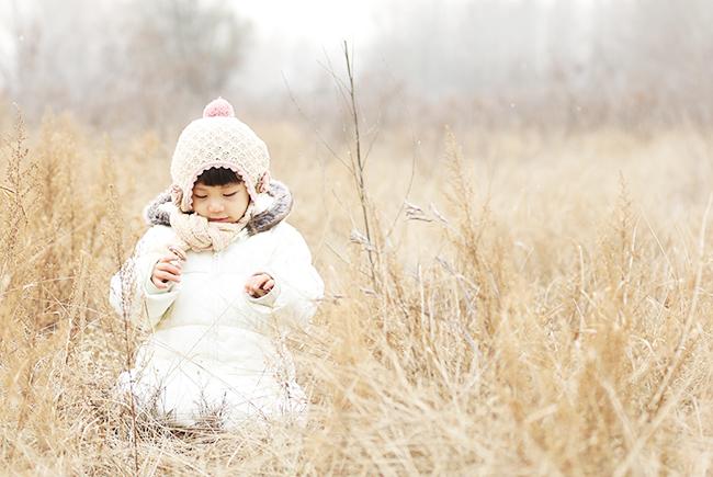 赛罕塔拉的冬天